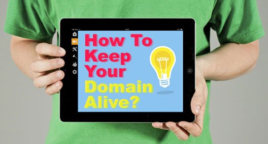 Make sure your domain name remain alive.